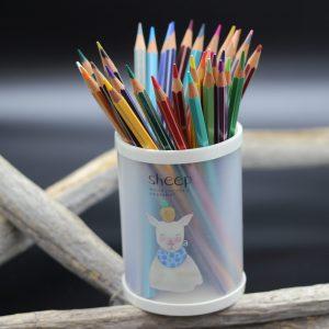 Botes de lápices